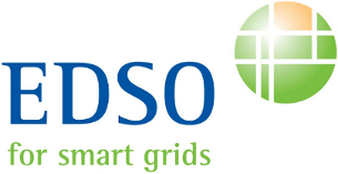 EDSO for Smart Grids